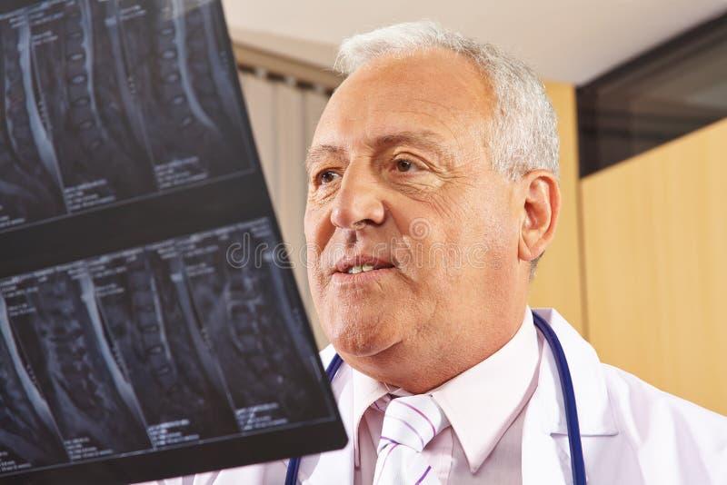 Doctor que mira la imagen de la radiografía de la espina dorsal imágenes de archivo libres de regalías