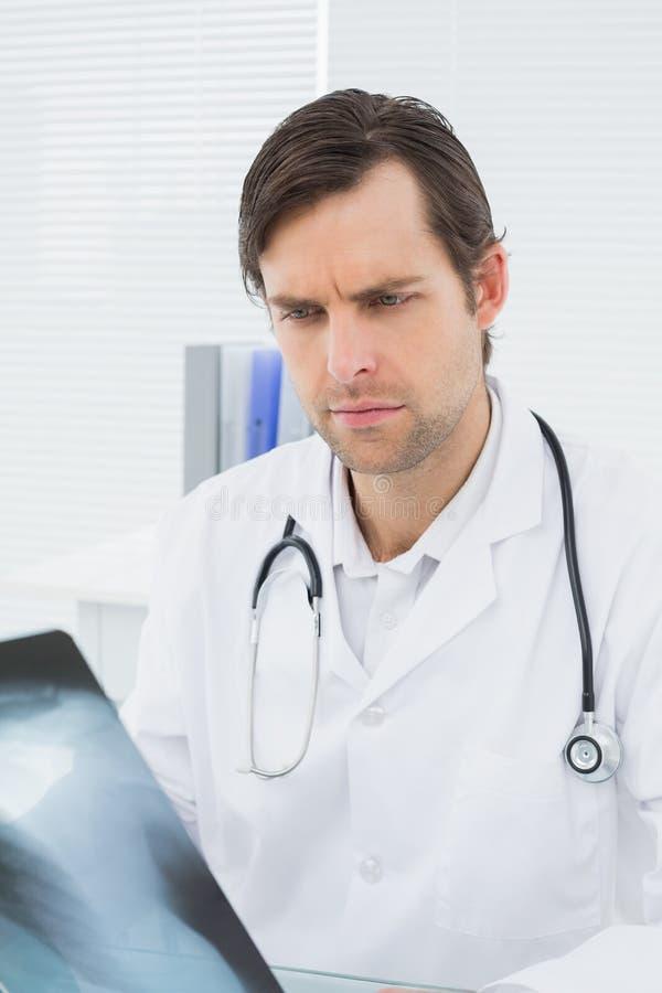 Doctor que mira la imagen de la radiografía de pulmones en oficina médica fotos de archivo