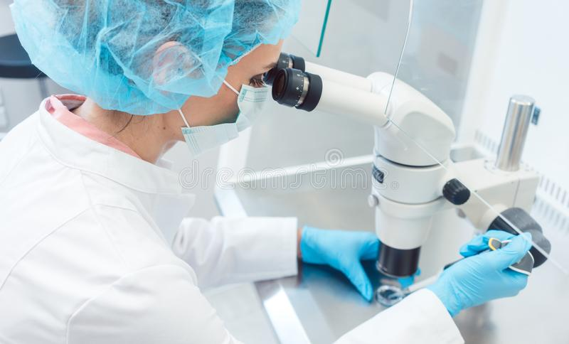 Doctor or scientist working on biotech experiment in laboratory. On microscope stock photo