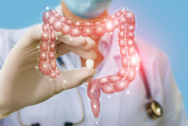A doctor showing a pill to treat gut . The concept of Treatment of the digestive system stock images
