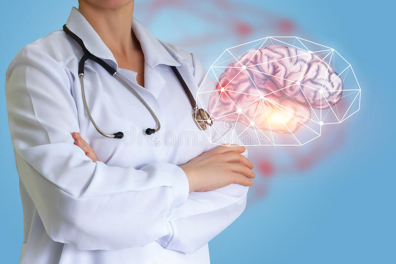 Doctor shows a human brain. Doctor shows a human brain concept design stock photo