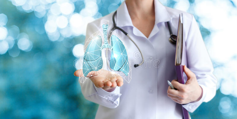 Doctor shows human lungs . Doctor shows human lungs on blurred background royalty free stock photos
