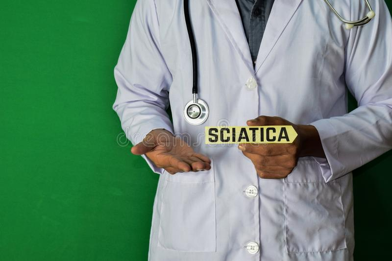 A doctor standing, Hold the Sciatica paper text on Green background. Medical and healthcare concept stock images
