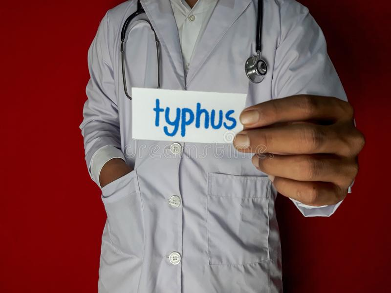 A doctor standing, Hold the typhus paper text on red background. Medical and healthcare concept royalty free stock photo