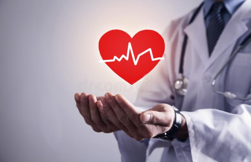 Doctor standing with stethoscope holding red heart with heartbeat royalty free stock photography
