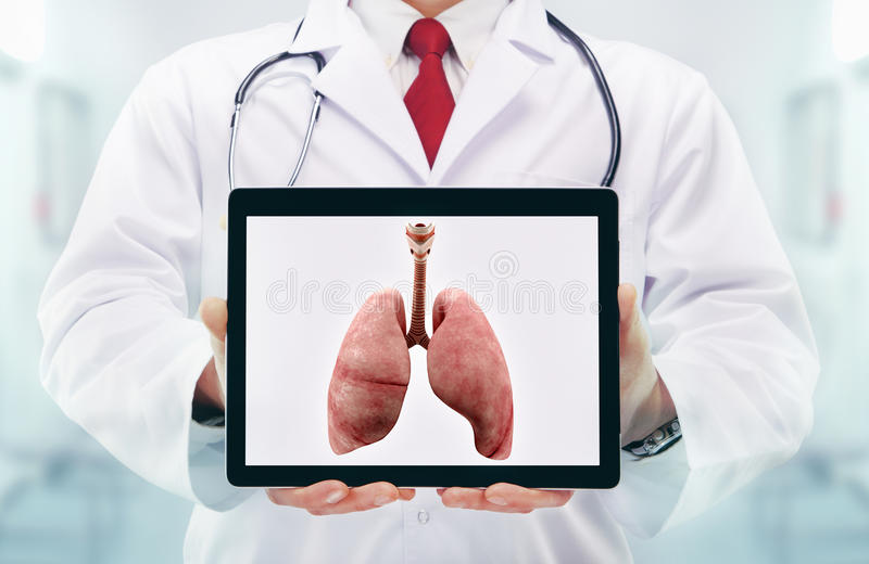 Doctor with stethoscope in a hospital. lungs on the tablet stock photos