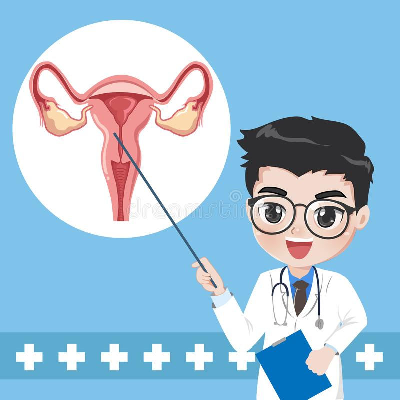 Doctor teaches give knowledge system human uterus vector illustration
