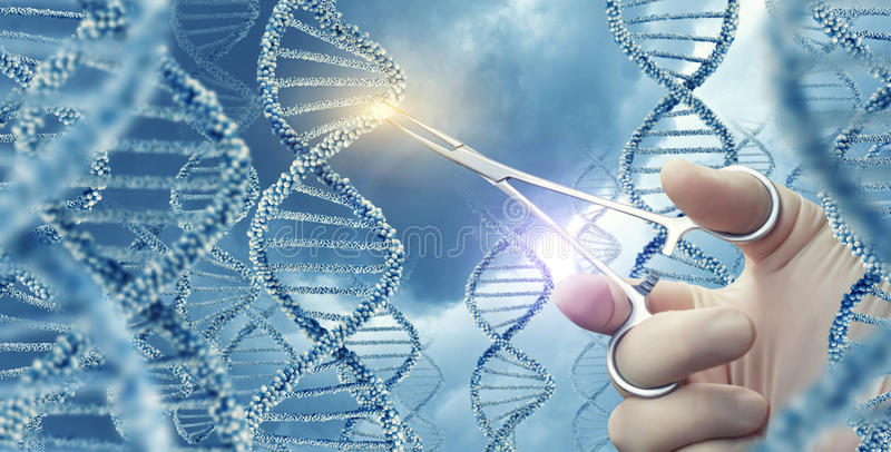 Doctor touched medical clamp a DNA . Doctor touched medical clamp a DNA molecule stock image