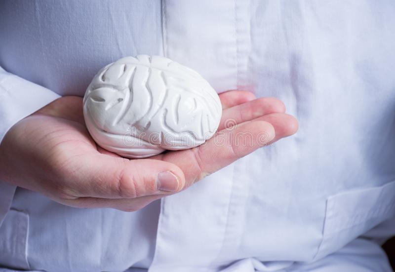 Doctor in white coat holds in his hand in palm of anatomical model of human brain. Concept photo of diagnosis, treatment and preve. Ntion of diseases of brain royalty free stock images