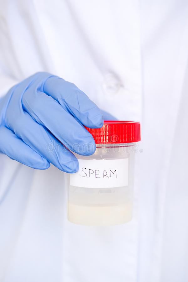 Doctor in a white coat and medical gloves holding a container with semen analysis, with the inscription in English. Donor sperm royalty free stock photos