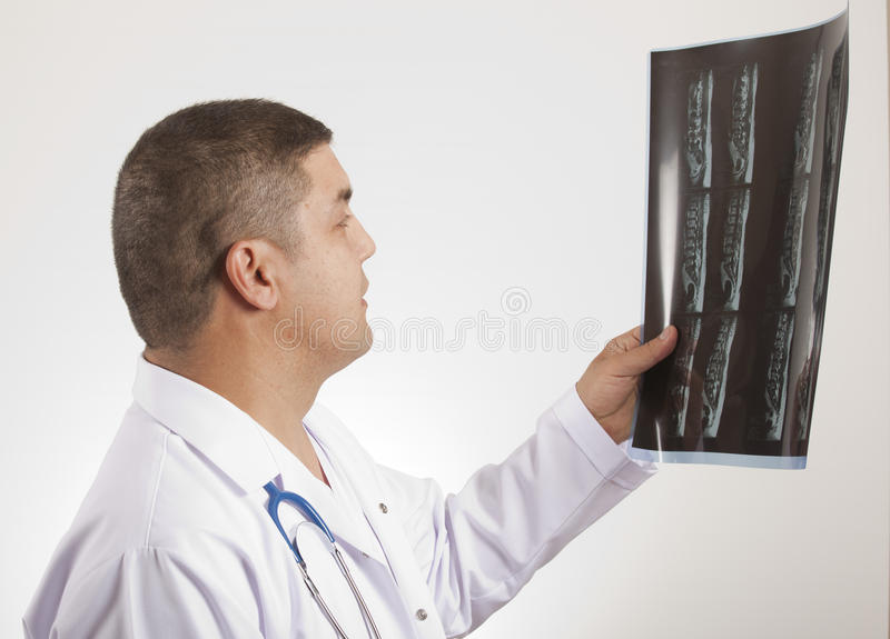 Download Doctor and x ray stock image. Image of male, adult, friendly - 24238621
