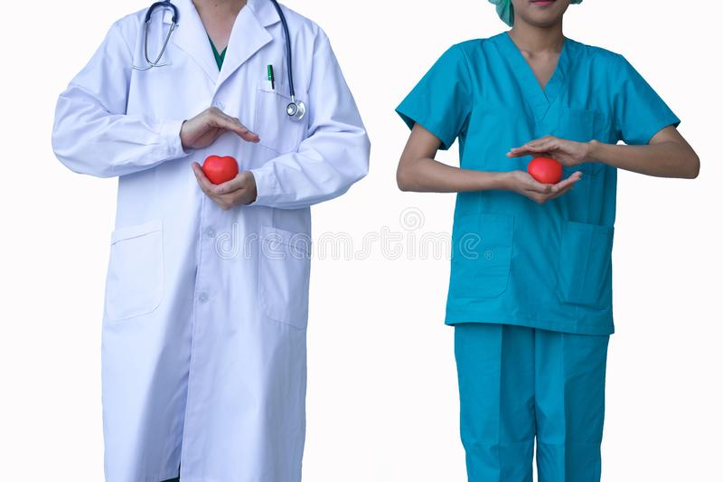 Doctors holding decorative heart on white background royalty free stock photos