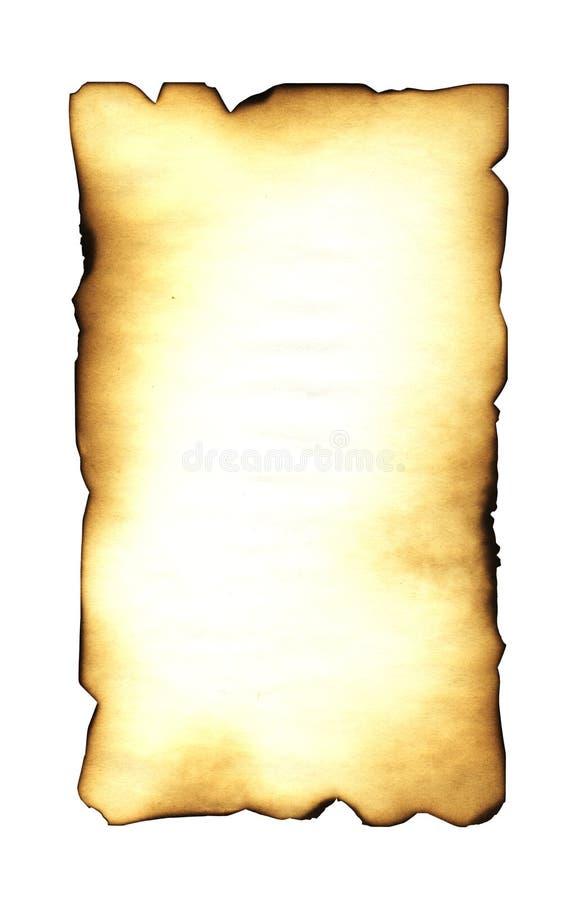 Document vector illustratie