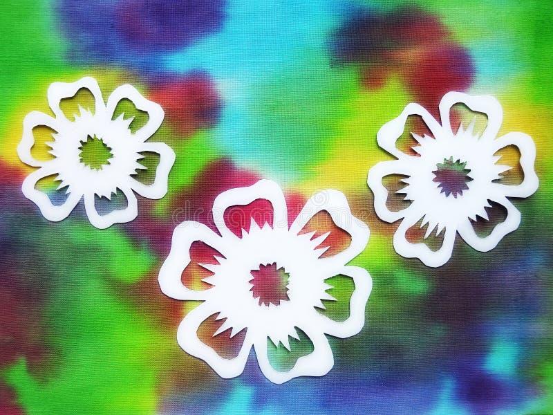 Document knipsel - witte bloemen op kleurrijke achtergrond royalty-vrije stock afbeelding