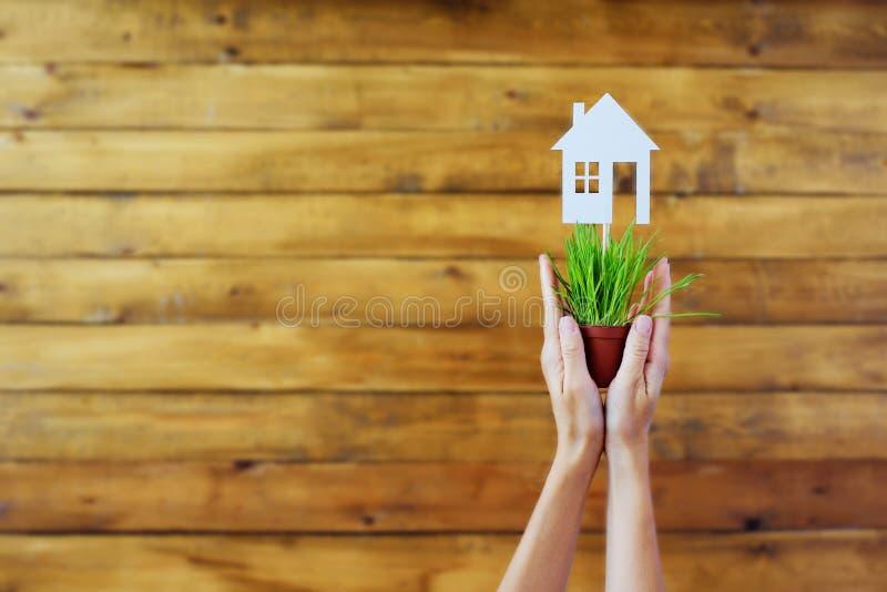 Document modellen van huizen in potten met een groen gras op een houten achtergrond royalty-vrije stock foto's