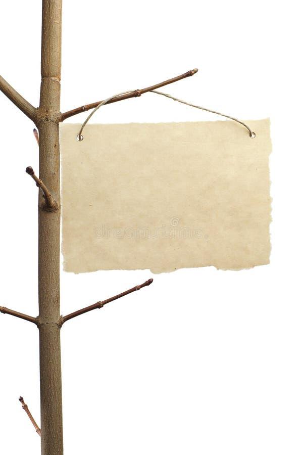 Document voor aankondiging op een boomtak stock fotografie