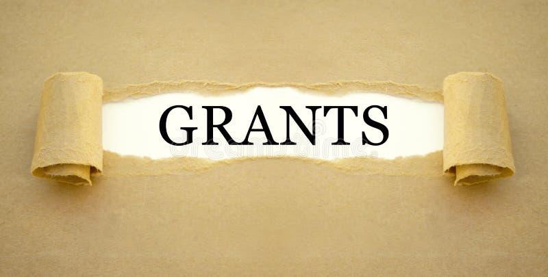 Documento com a concessão do governo para financiar a fundação de uma empresa nova fotos de stock royalty free