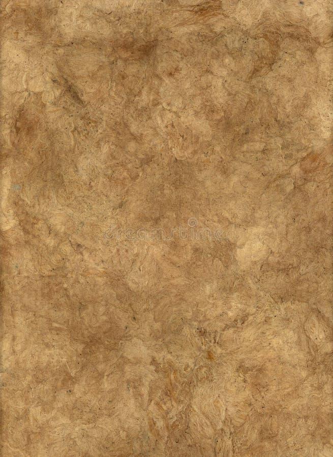 Documento della corteccia del Brown. fotografia stock libera da diritti
