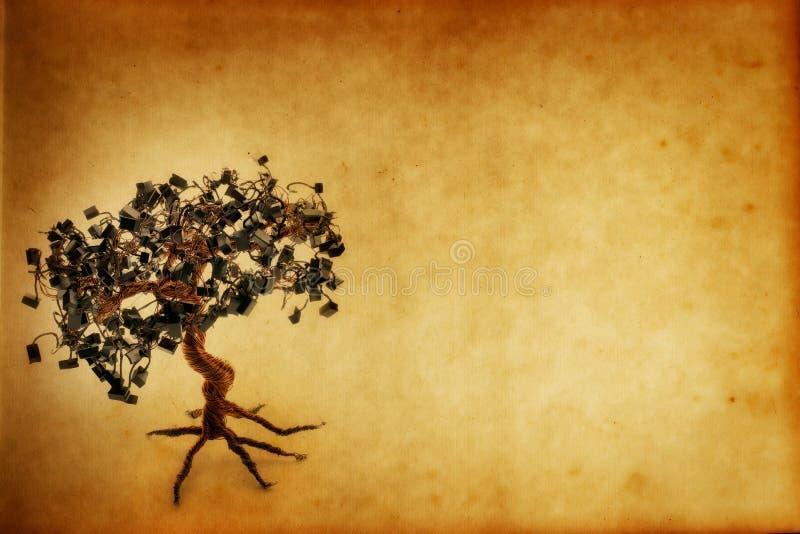 Documento elettronico dell'albero dei bonsai di Grunge fotografia stock