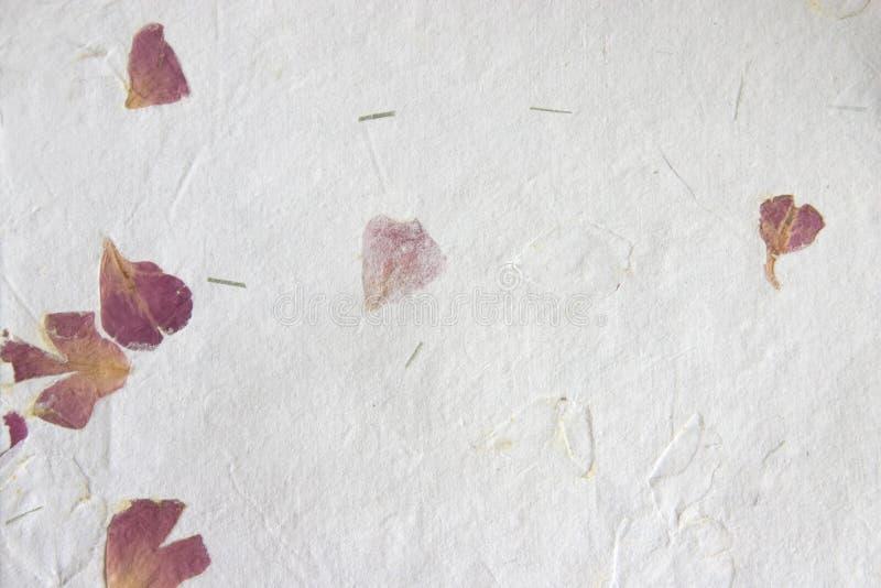 Documento fatto a mano - petali fotografia stock