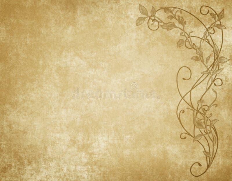 Documento o pergamena floreale illustrazione di stock