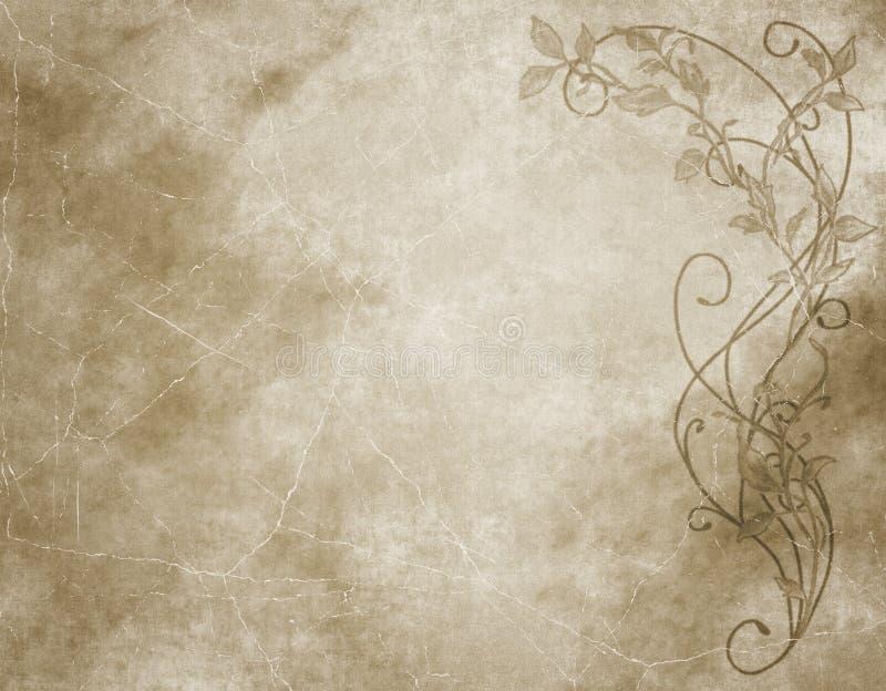 Documento o pergamena floreale illustrazione vettoriale