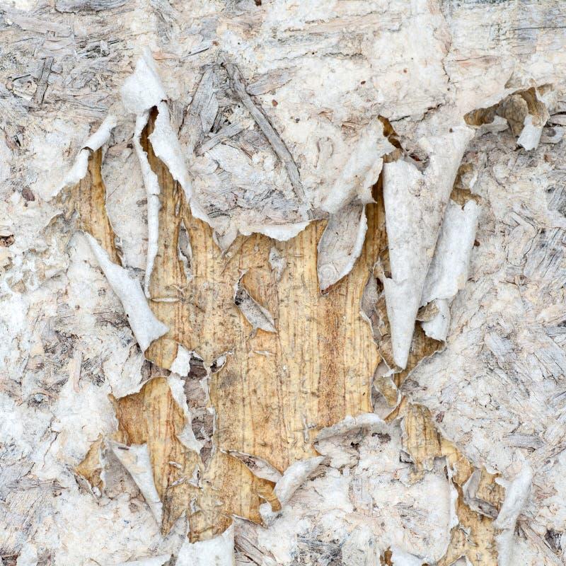 Documento rasgado viejo sobre la pared de madera fotos de archivo