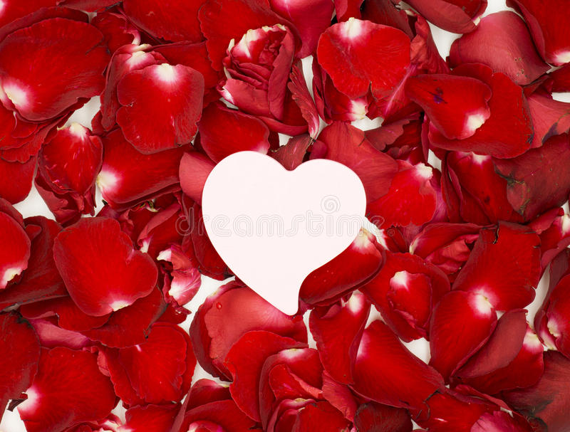 Documento rosado del corazón sobre los pétalos color de rosa rojos fotografía de archivo