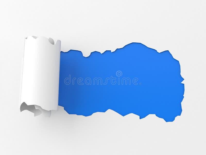 Documento rotolato illustrazione vettoriale