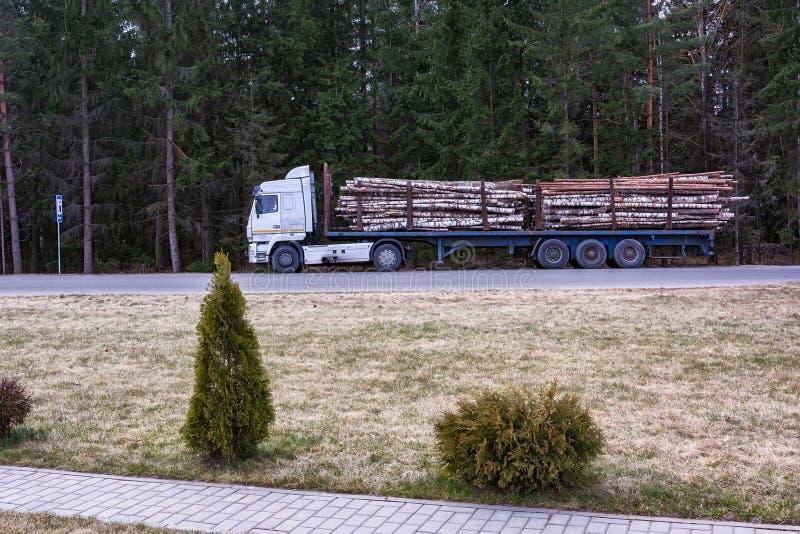 Dodatek specjalny ciężarówka odtransportowywa bagażniki powalać drzewa obraz royalty free