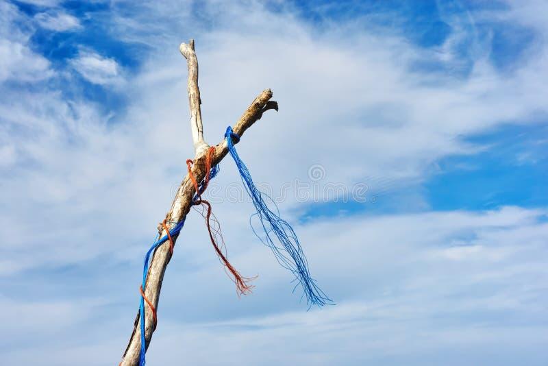 Dode boomtak met gekleurde plastic kabel stock afbeelding