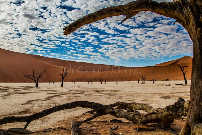 Dode Vlei dichtbij Sossusvlei in Nambia stock foto