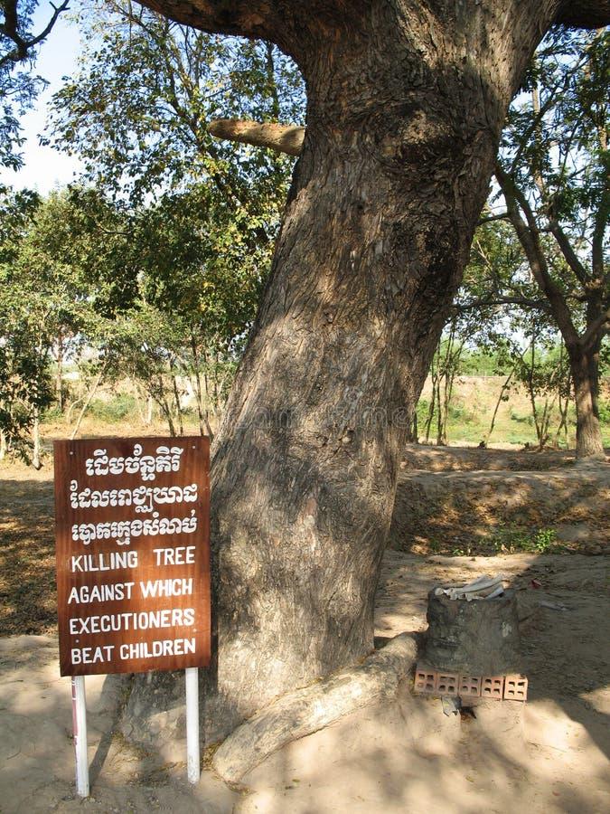 Dodende boom waartegen de beulen kinderen slaan. Kambodja royalty-vrije stock afbeelding