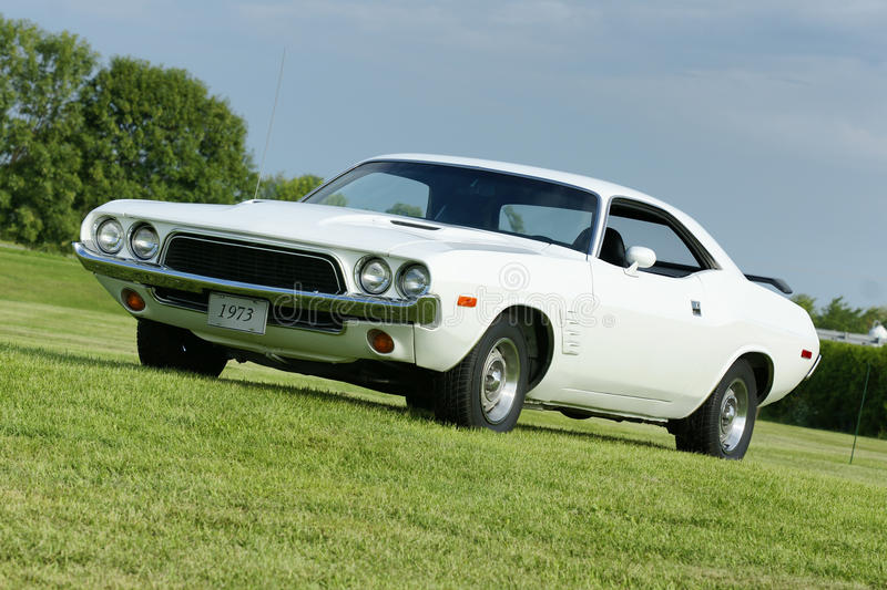 Dodge challenger. Picture of the 1973 white dodge challenger royalty free stock images