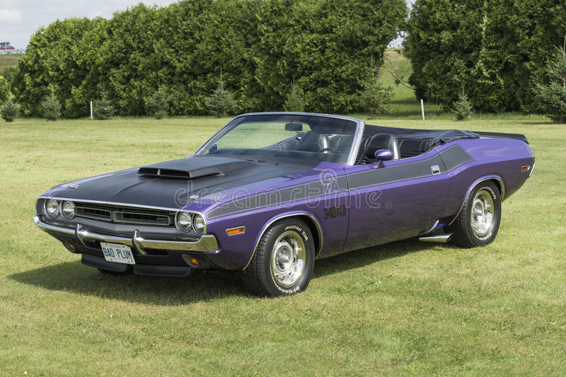 Dodge challenger convertible royalty free stock image