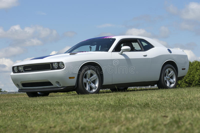 Dodge challenger. St-liboire august 8, 2015 picture of white dodge challenger sitting on the grass during car show stock image