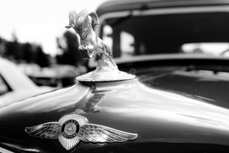 1934 Dodge Hood Ornament arkivbild