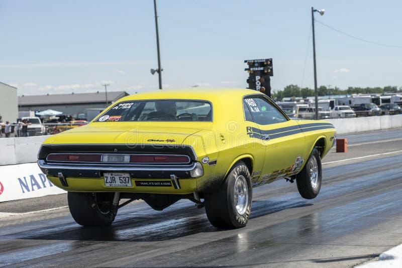 Dodge-uitdager wheelie stock afbeelding