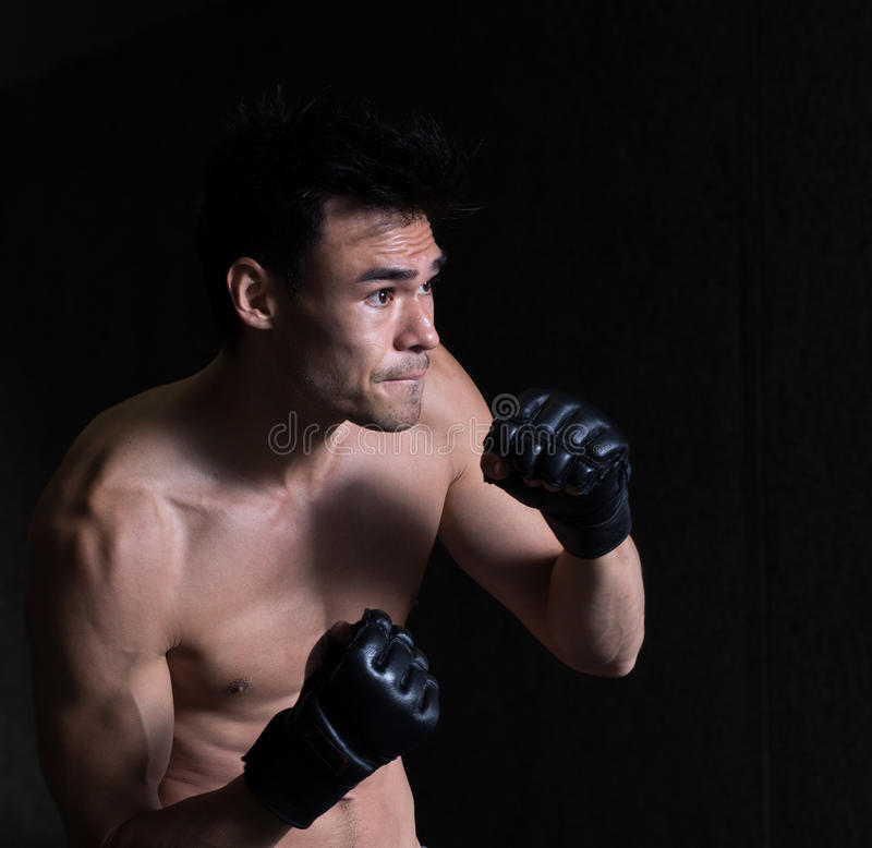 Dodging The Blow. A lean well-built mixed martial artist poses in a dynamic position stock images