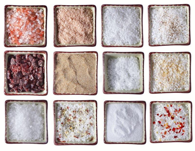 Dodici tipi di sali del mare in ciotole quadrate fotografia stock libera da diritti