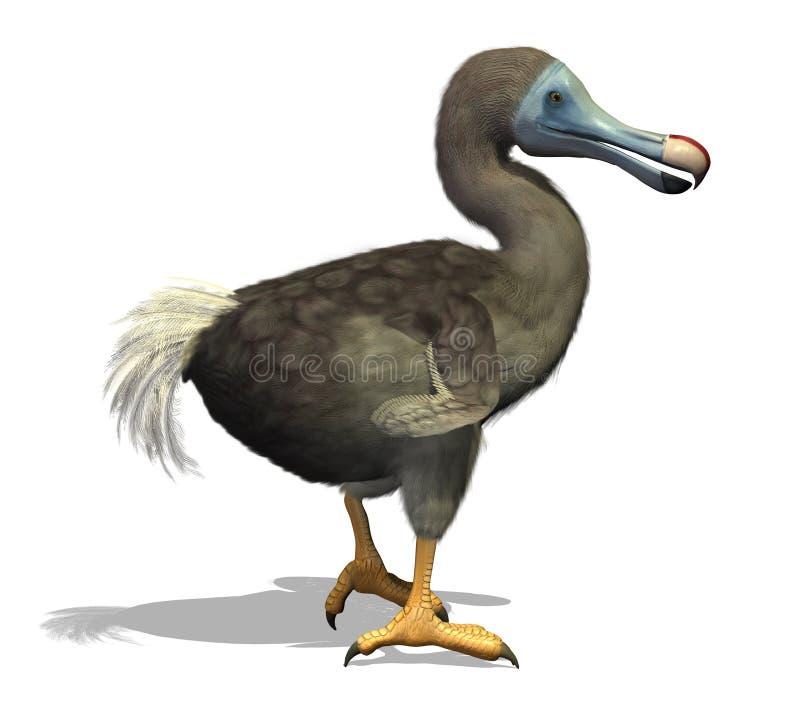 Dodo Ptak ilustracja wektor