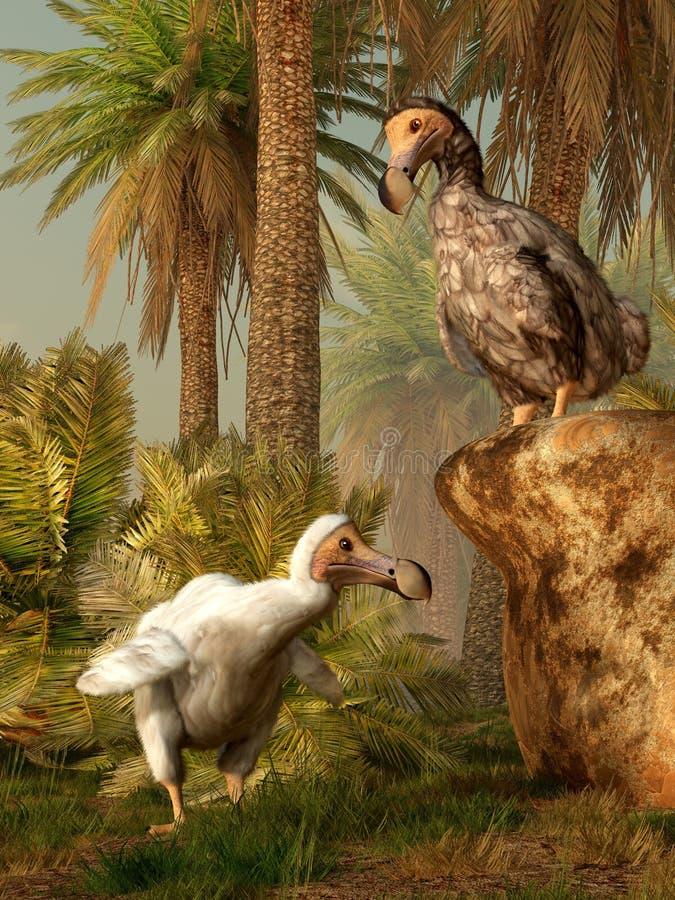 Dodo ptaki royalty ilustracja