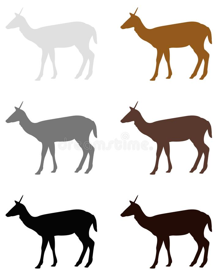 Doe- eller hjortkontur - traskat idisslande däggdjur royaltyfri illustrationer