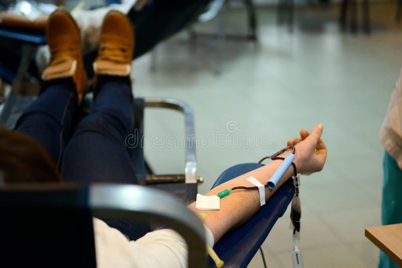 Doe o sangue imagens de stock