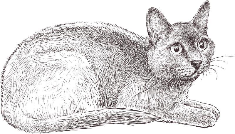 Doen schrikken kat vector illustratie