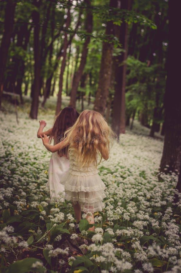 Doen schrikken kinderen in donker bos stock afbeelding