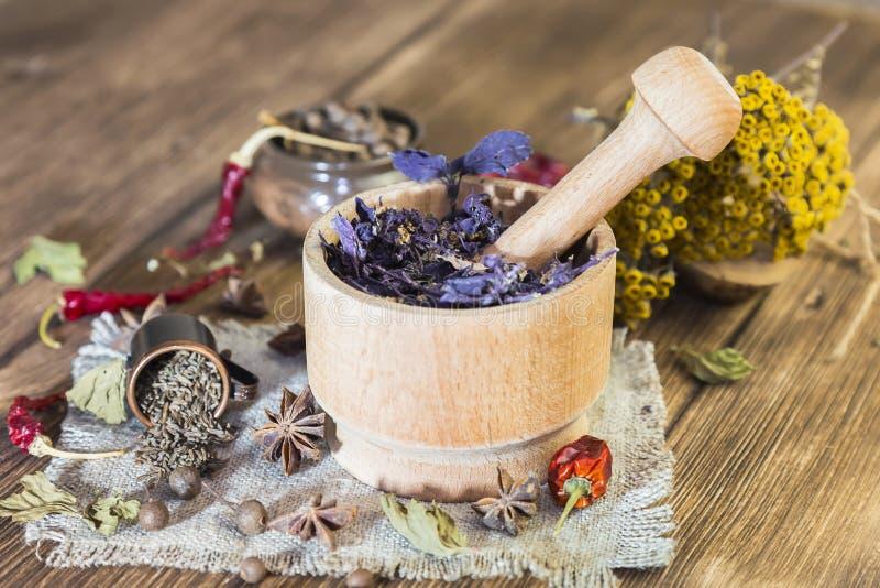 Doftande torkade läka örter för terapi och kryddiga kryddor På tabellen i en mortellilabasilika tansy, peppar, chili och arkivbild
