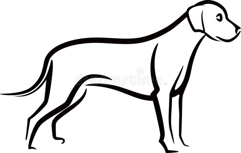 Download A dog stock illustration. Illustration of graphic, cute - 20497398