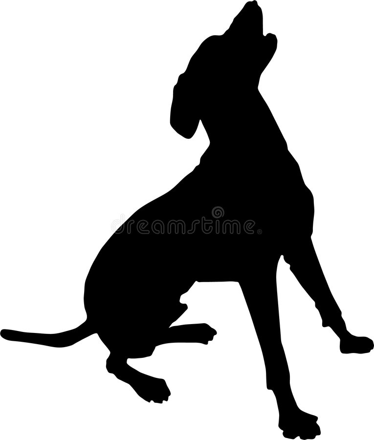Dog. A dog sitting up and barking