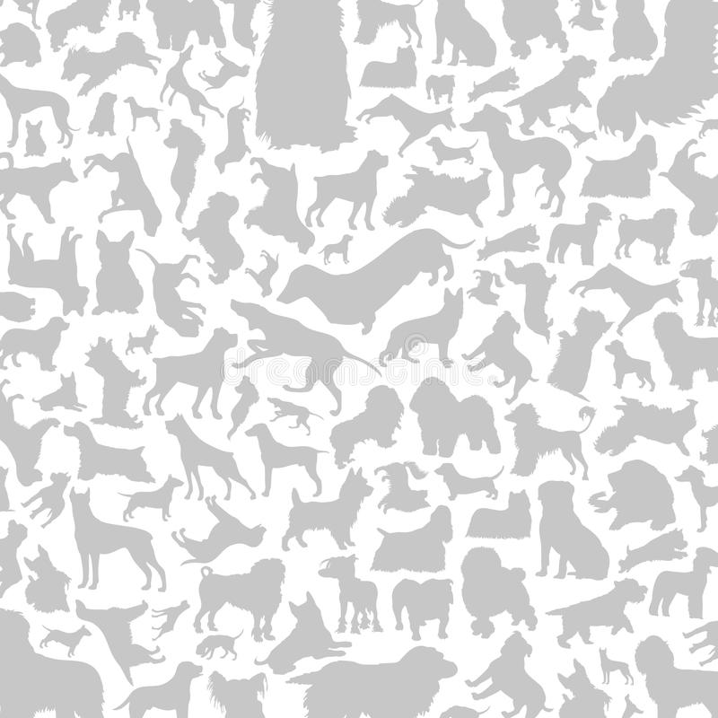 Free Dog A Background Stock Photos - 35250183